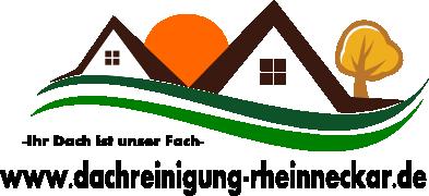 Dachreinigung Rhein Neckar Logo